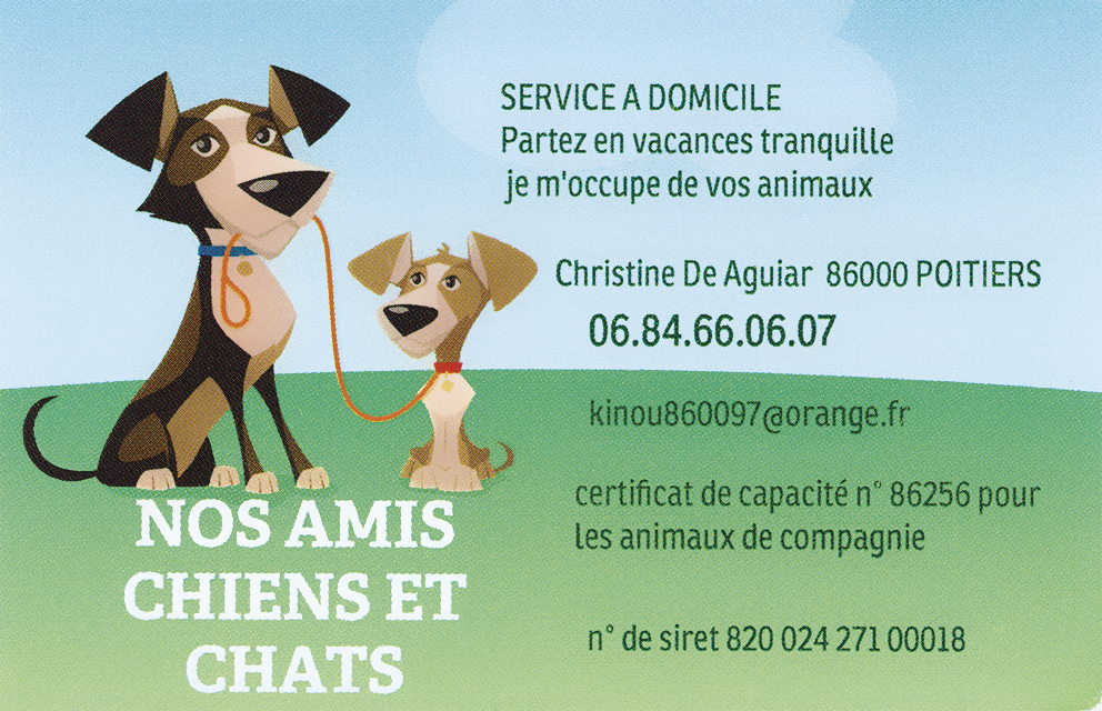 Nos amis chiens chats